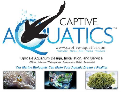 Captive_aquatics_aquarium_design_service_installation_ad