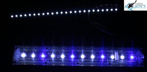 Ecoxotic_reef_aquarium_led_lighting_white_stunner_strip_led_module_wired