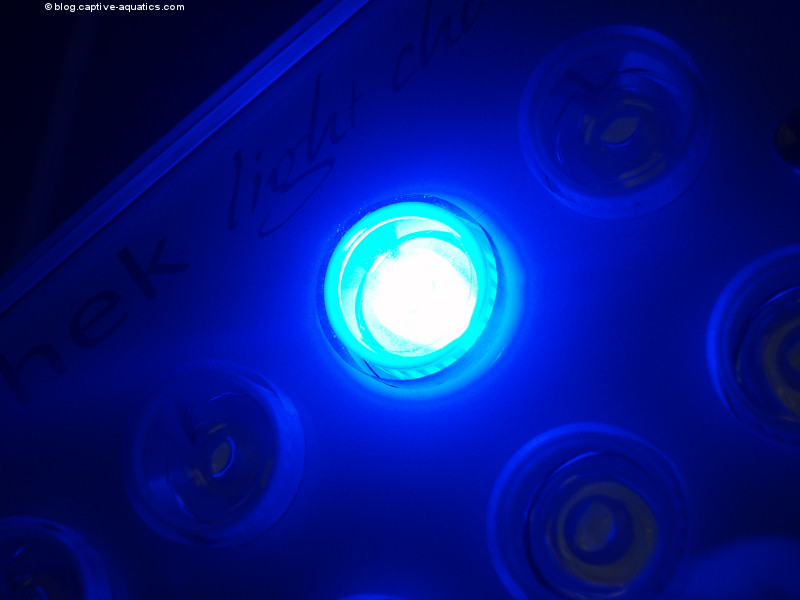 Orphek_pr_156_reef_aquarium_led_light_for_deep_water_reef_aquariums15