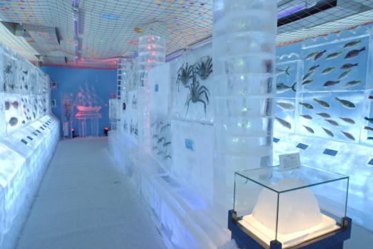 Japan-ice-museum-frozen-aquarium-4