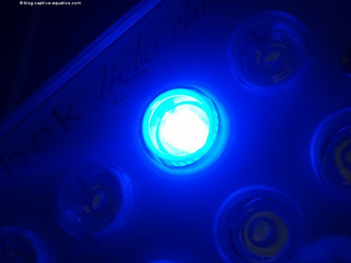 Orphek_pr_156_reef_aquarium_led_light_for_deep_water_reef_aquariums15