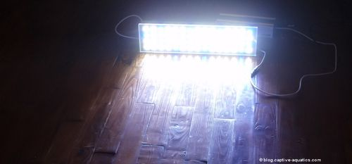 Orphek_pr_156_reef_aquarium_led_light_for_deep_water_reef_aquariums12