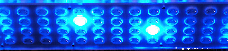 Orphek_pr_156_reef_aquarium_led_light_for_deep_water_reef_aquariums10