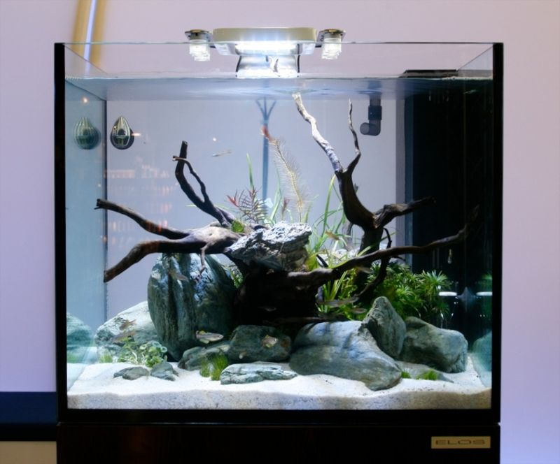 Elos_midi_led_aquarium_lighting_aqua_spot_xl