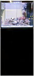 Elos_midi_aquarium_price