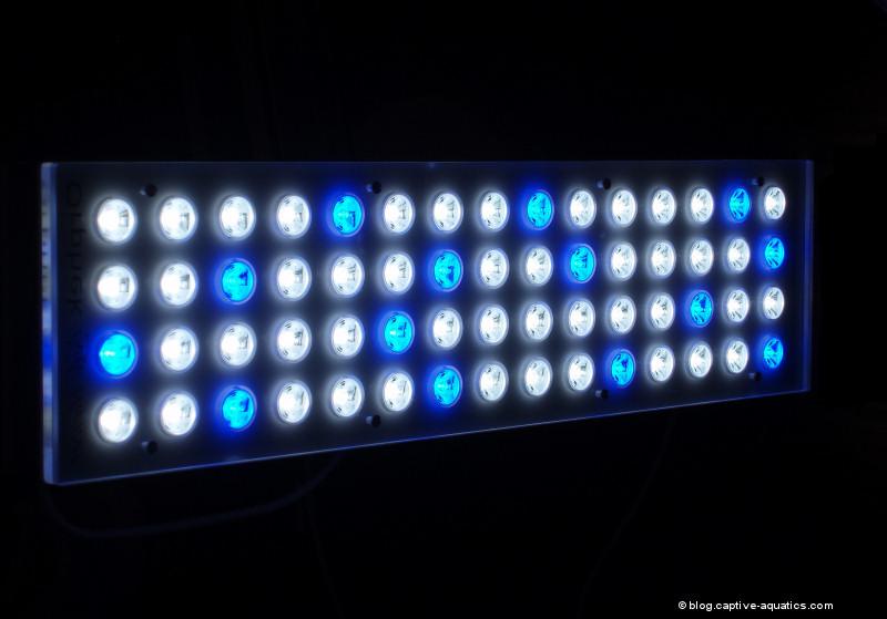 Orphe_pr_156_reef_aquarium_led_light_for_deep_water_reef_aquariums5