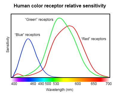Human-eye-color-receptor-chart