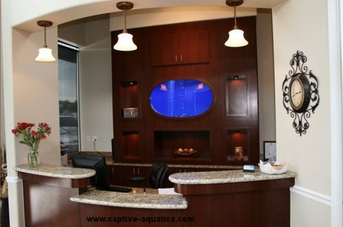 Captive_aquatics_custom_aquarium_houston_teethwise_dental