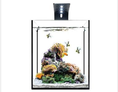Eco-pico-led-aquarium